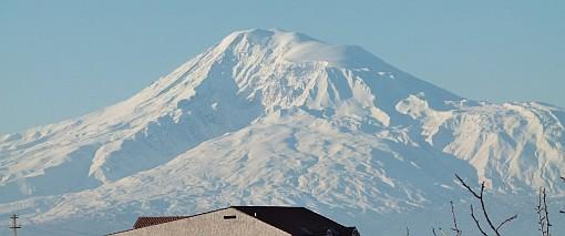 Mr. Ararat 510