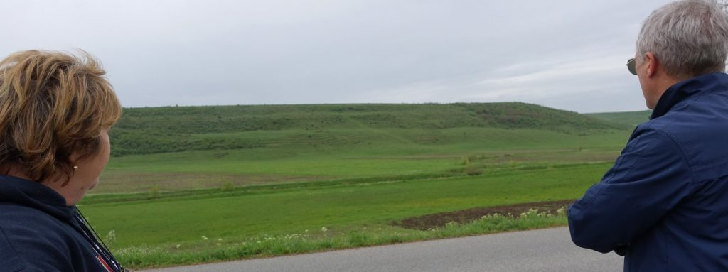 50 Acres of Beautiful Land